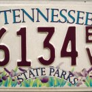 2002 Tennessee State Parks License Plate (6134 EV)