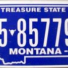 2010 Montana License Plate (5-85779A)