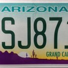 2016 Arizona License Plate (BSJ8711)
