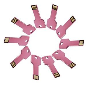 Enfain® 10Pcs Metal Key 16GB USB Flash Drive 2.0 Memory Stick Multi Color Choice (Pink)