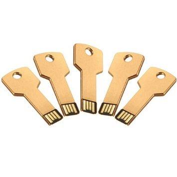 Enfain® 5Pcs 1GB Bulk Promotional Metal Key USB Flash Drive 2.0 Memory Stick Pen Drive(Gold)