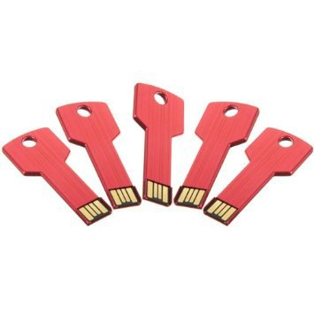 Enfain® 5Pcs 2GB Bulk Promotional Metal Key USB Flash Drive 2.0 Memory Stick Pen Drive(Red)