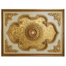GORGEOUS LARGE GOLDEN MANOR CEILING MEDALLION,62.5'' X 47'' X 3''