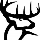 BUCK COMMANDER DEER VINYL DECAL STICKER 8""