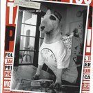 Magazine Paper Print Ad With Moncler For 2012 Bull Terrier Dog