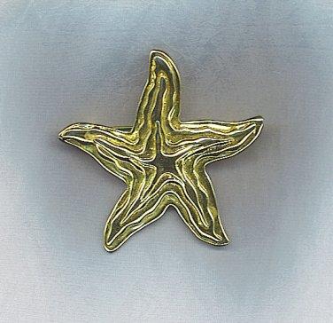 GORGEOUS PARK LANE FREE FORM STAR PIN/PENDANT