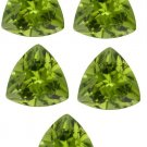 Certified Natural Peridot AAA Quality 5 mm Faceted Trillion Shape 5 pcs Lot Loose Gemstone
