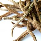 Silene Capensis (Xhosa/African Dream Herb) 100 grams (4 oz)