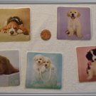 Noronha116 Scrapbook Stickers Squares Animals ~ Dogs