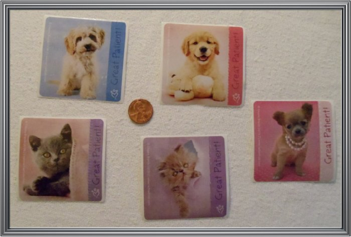 Noronha116 Scrapbook Stickers Squares Animals Patience