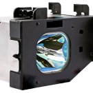 LAMP IN HOUSING FOR PANASONIC TELEVISION MODEL PT43LC14 (P1)
