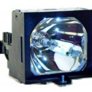 SONY LMPP202 LMP-P202 LAMP IN HOUSING FOR PROJECTOR MODEL VPLPX15