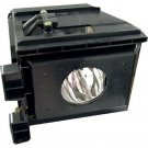 LAMP IN HOUSING FOR SAMSUNG TELEVISION MODEL SP61L3HX (SA8)