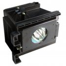 LAMP IN HOUSING FOR SAMSUNG TELEVISION MODEL SP42L6HX (SA9)
