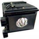 ELECTRIFIED BP96-00826A BP9600826A OSRAM NEOLUX BULB IN HOUSING FOR SP42L6HN