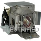 VIEWSONIC RLC-070 RLC070 LAMP IN HOUSING FOR PROJECTOR MODEL PJD6223