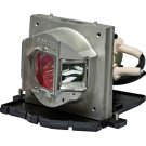 OPTOMA BLFU220C BL-FU220C LAMP IN HOUSING FOR PROJECTOR MODEL EP761