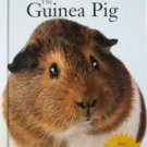 The Guinea Pig by Audrey Pavia (Hardcover 2001, New)