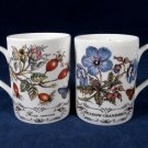 ELIZABETHAN Staffordshire 2 Coffee Tea Mug Cup Floral Dog Rose Meadow England Fast Free Ship