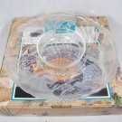 Crystal Clear Studios Seabreeze Frosted Glass Round 2 Pc Chip & Dip Serving Tray