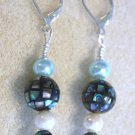 Abalone Shell Earrings - Item #E127