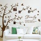 [X Large] Family Photo Tree & Birds Art Vinyl Wall Sticker, DIY Wall Decal