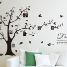 [Medium] Family Photo Tree & Birds Art Vinyl Wall Sticker, DIY Wall Decal