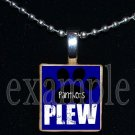 JAMES E PLEW PANTHERS Elementary School Team Mascot Pendant Necklace Charm or Keychain