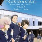 DVD ANIME Tsuki ga Kirei Vol.1-12End As The Moon So Beautiful English Sub