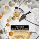 The Best Of Exotic Asian Lounge (2CD)