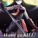 DVD Akame ga Kill Vol.1-24 End Japanese Anime Region All Eng Sub