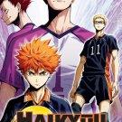 DVD Haikyuu The Movie 4 Concept No Tatakai 排球少年 Japanese Anime Eng Sub