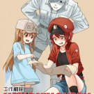 DVD Hataraku Saibou Vol.1-13 End 工作细胞 Japanese Anime Eng Sub Region All