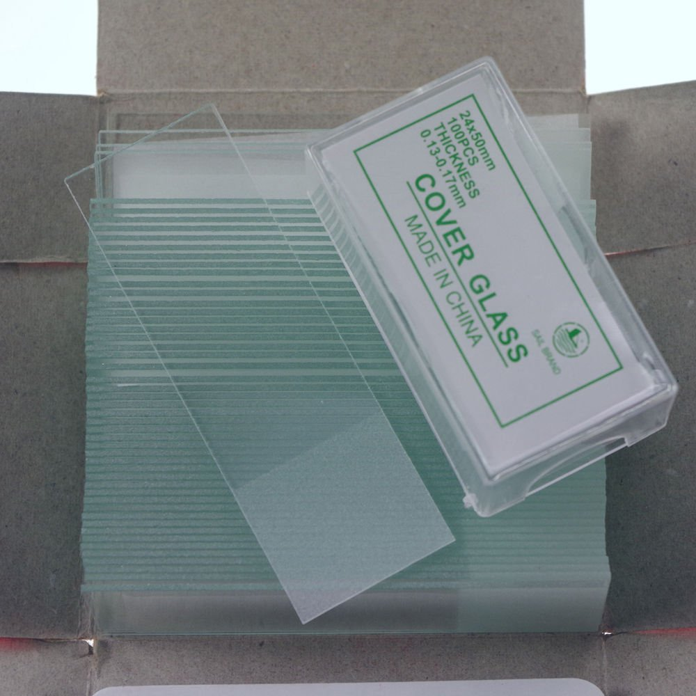 microscope slides 50pcs frosted & 200pcs 24x50 cover glass slips