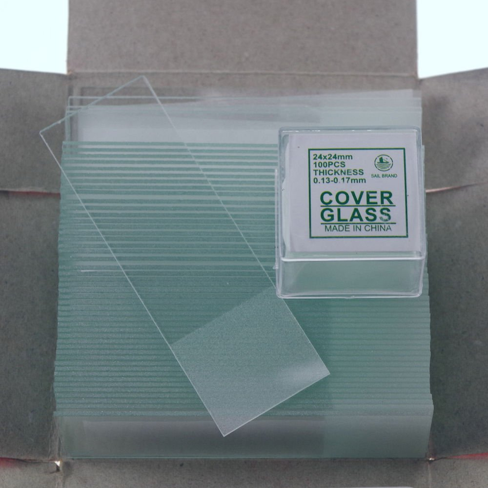 200pcs 24x24 microscope slides 50pcs frosted & cover glass slips