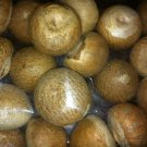 Whole Supari Grade A Quality (1 lb) Betel Nuts Areca Catechu