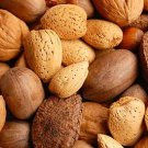 Mixed  Nuts  in  Shell premium quality  Almonds, Brazil Nuts, Hazelnuts Pecans and Walnuts  8 lbs