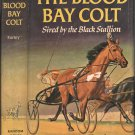 The Blood Bay Colt, Sired by the Black Stallion (Black Stallion Series #6)