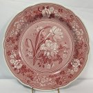 "Spode Archive Collection Georgian Series Botanical 10.5"" Dinner Plate Cranberry"