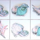 "Sea Shell Clam Conch Ceramic Tile Accents 6 of 4.25"" Kiln Fired Decor Backsplash"