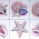"Star Fish Conch Sea Shell Ceramic Tile Accents to Mural 6 of 4.25"" Kiln Fired"