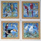 "Mccaw Cockatoo Tucan Parrot Bird Ceramic Tiles 4.25"" x4.25"" Accent Kiln fired"