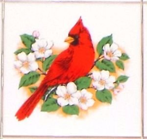 """Cardinal Song Bird with white flowers Ceramic Tile 4.25"""" Kiln Fired Accent"""