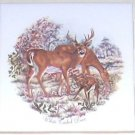 "Closeout White Tail Deer Family or Herd Ceramic Tile 4.25"" Kiln Fired Decor"