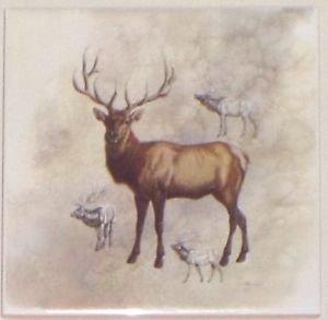 """Elk or Deer Ceramic Tile 6.00"""" x 6.00"""" Kiln Fired Back Splash Tile"""