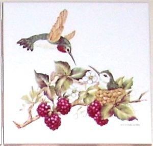 "Humming Bird with Baby Ceramic Tile 4.25"" Hummingbird Berries Kiln Fired"