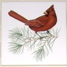 "RED CARDINAL BIRD Ceramic Tile 4.25"" Kiln Fired Accent WITH PINE BRANCH"