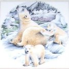 "Closeout POLAR BEAR AND CUBS CERAMIC TILE 6"" X 6"" KILN FIRED DECOR"