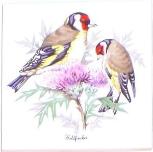 "Red Head Finch Song Bird Ceramic Tile 4.25"" x 4.25"" Accent Backsplash Kiln Fired"