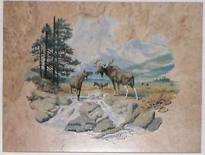MOOSE Ceramic Tile for Wall or Floor Back Splash Decor 12 inch by 9 inch